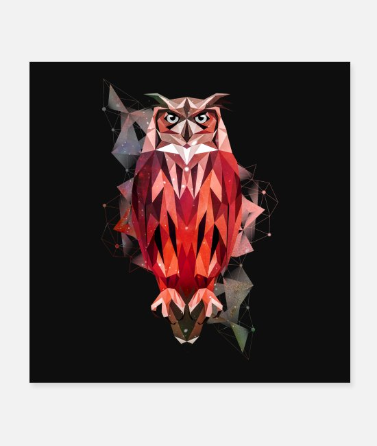 Nature Posters - hibou - Posters blanc