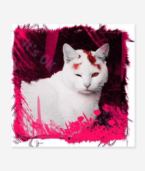 Meow Posters - It's OK - Posters white