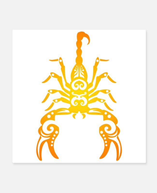 tageshoroskop skorpion frau single