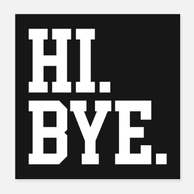 Offensive Hi Bye Funny Offensive Quote Poster - Poster