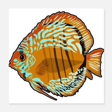 Aquarium discusfish - discus fish - Poster