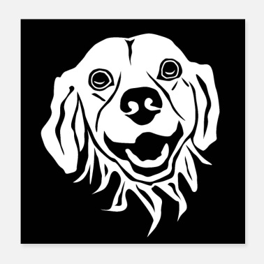 Cute dog in black and white - Poster