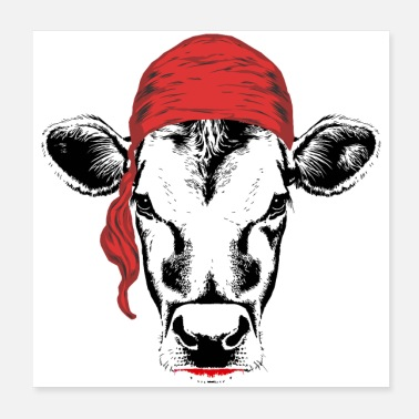 Sweet Cow Pirate cow - Poster