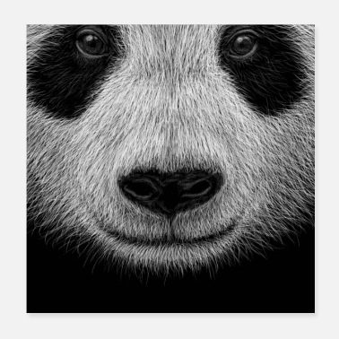 Illustration Coole Panda Illustration Lässige Pandabär Kunst - Poster