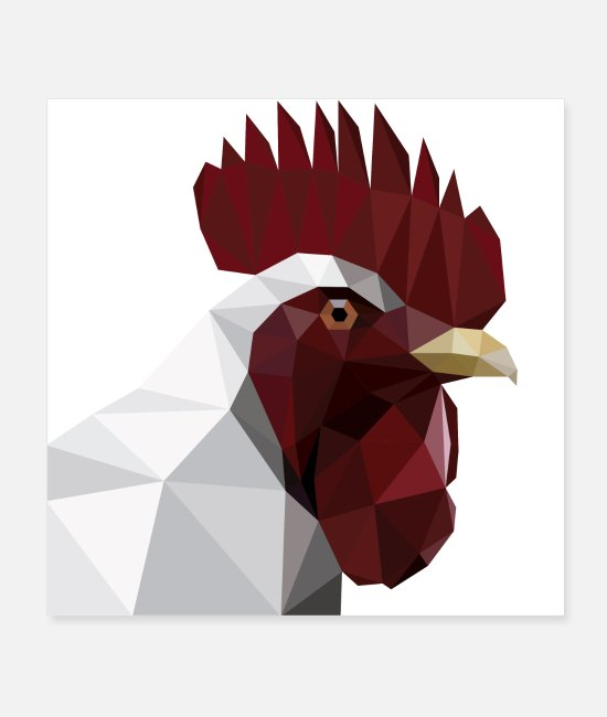 Chicken Posters - Fighting cock and domestic chicken head for chicken farmers - Posters white