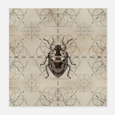 Bug Sacred Geometry Soldier Bug - Poster