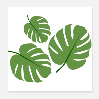 Monsteri Monstera-kasvi - Juliste