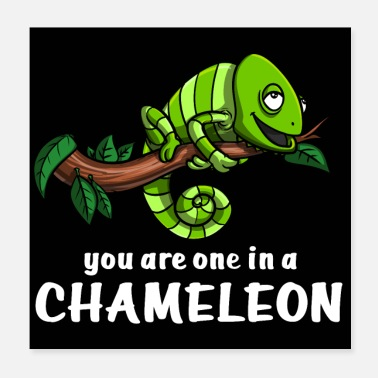 One One In Chameleon - Poster