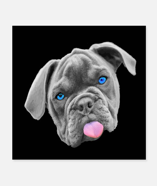 English Posters - Bully, bulldog, frenchie, face mask, black - Posters white