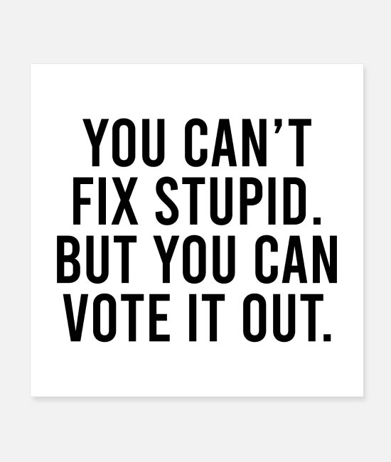 President Posters - You Can't Fix Stupid, But You Can Vote it Out - Posters white