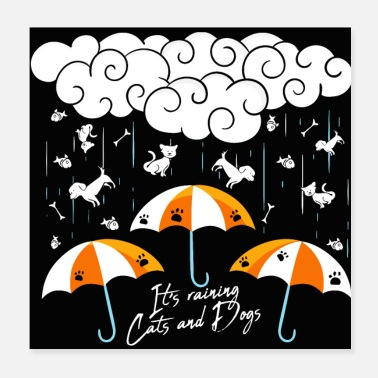 Expression It's raining cats and dogs - Poster 20x20 cm