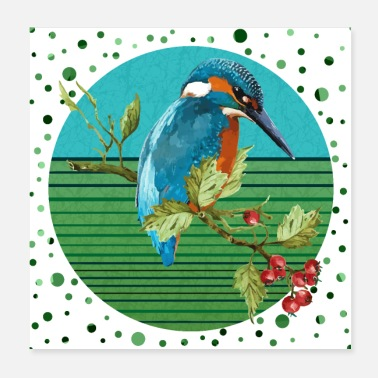 Bird Kingfisher bird - Poster