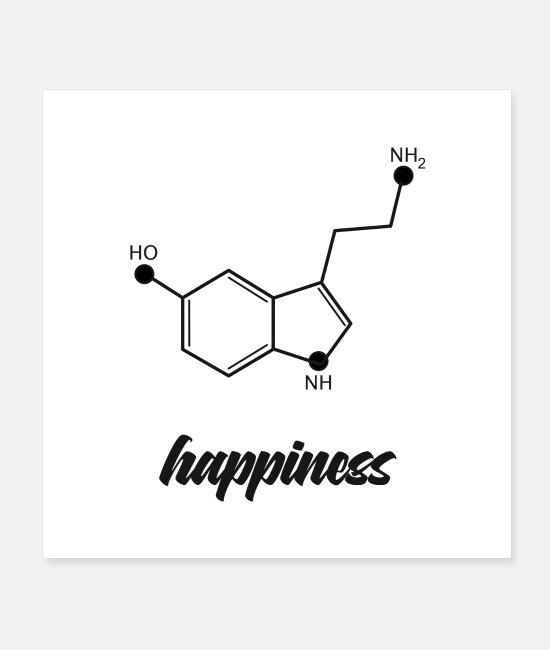 At Home Posters - happiness formula / - Posters white