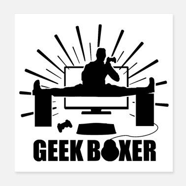 Misappropriation GEEK BOXER - Poster