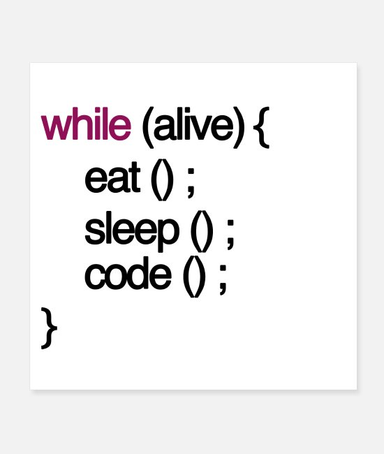 Eat Sleep Code Posters - while alive code Computer scientist programming coding - Posters white