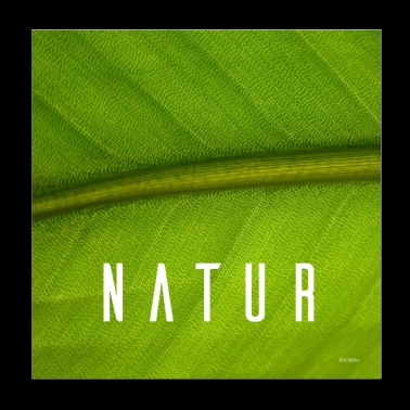 The nature - Poster 20x20 cm