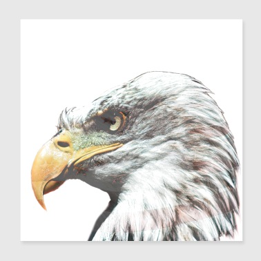 Bald eagle with American flag - Poster 20x20 cm