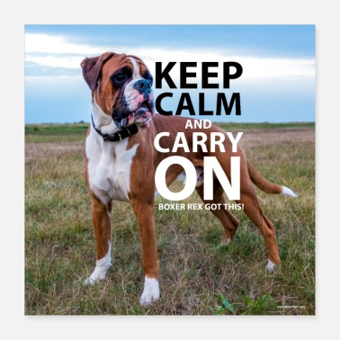 Keep Calm Poster KEEP CALM Boxer Rex Got This - Poster