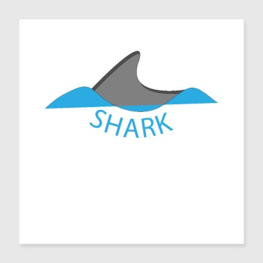 Shark dolphin ocean sea swimming water animal - Poster 40x40 cm