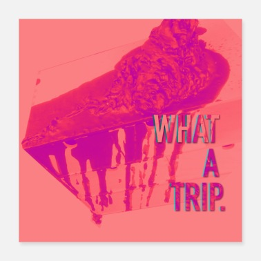Hip what a trip - Poster