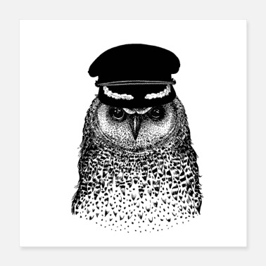 OWL CAPTAIN BIRD - Poster