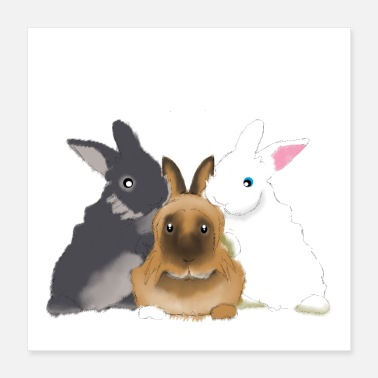Sock Rabbit Sock and his bunnys flake & Barry - Poster