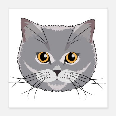 Wife British Shorthair Cat Gift Husband Wife BKH - Poster 40x40 cm