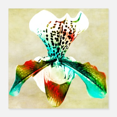 Watercolour Orchid watercolor poster 2 - Poster 40x40 cm