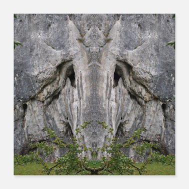 Mythical Creature Mythical mythical creature in the rock - mirror photograph - Poster