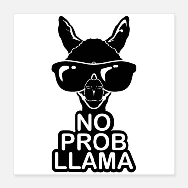 Problem No problem for the cool Lama! - Poster