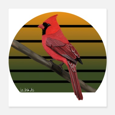 Oficial Person jz.birds Red Cardinal Bird Design - Póster