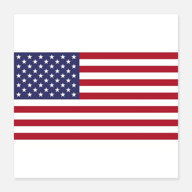 United States American Flag of United States - Poster