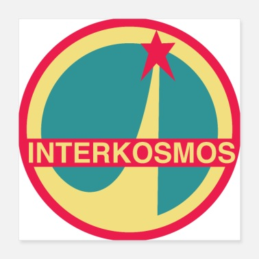 Missile Intercosmos NASA logo - Poster