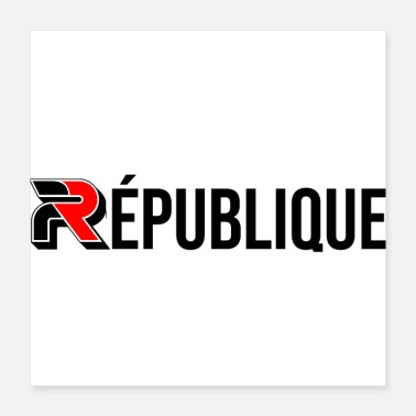 Ministry French Republic Europe France Paris flag - Poster