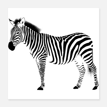 Decepticon Zebra crossing - animal - vacation - Africa - Poster