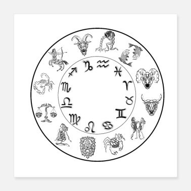 Astrology zodiac 12 signs astrology constellation poster - Poster