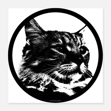 Stencil STENCIL KITTY CAT LOVER (juliste) - Juliste