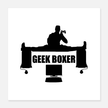 Informatique GEEK BOXER - Poster