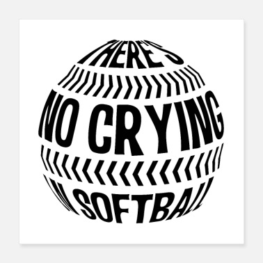 Softball Player Softball | Softball pitcher training gifts - Poster