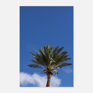 Palm ørken dating service