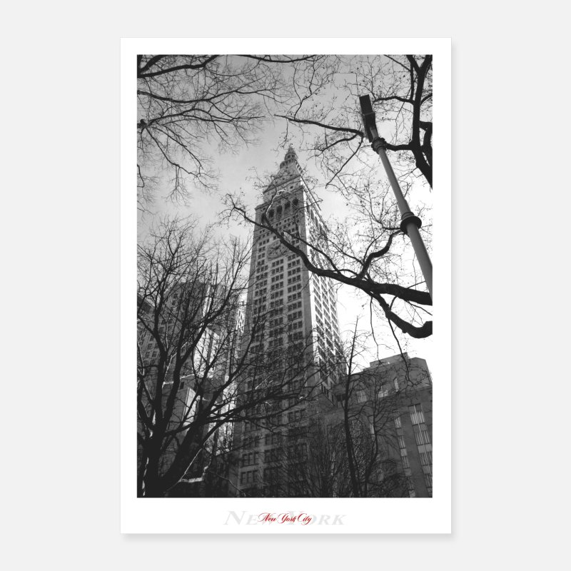 Paysage Posters - New York City (Affiche) - Posters blanc
