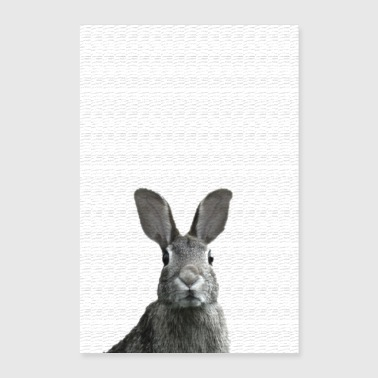 Hare affisch - Poster 60x90 cm