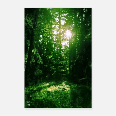 Shiny shiny forest - Poster