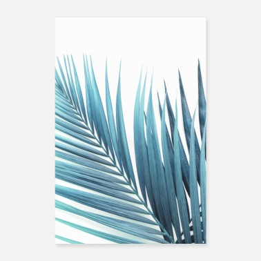 Palmen Palm Leaves - Poster