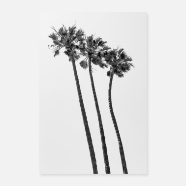 Palm trees on the beach | Monochrome - Poster