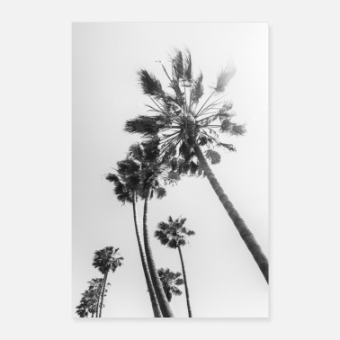 Palm trees in the sun | Monochrome - Poster