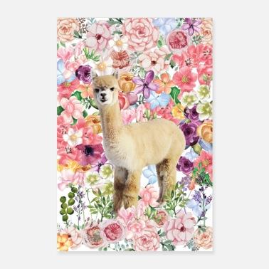 alpaca - Poster