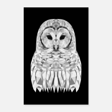 Buho SNOWEEULE OWL GIFT ANIMAL NATURE FOREST BLANCO - Póster 60x90 cm