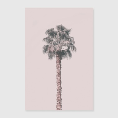 Rosa Palm Tree - Poster 60x90 cm