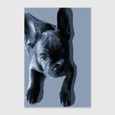 Bully baby - Poster 24 x 35 (60x90 cm)